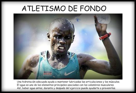 ATLETISMO DE FONDO Marcela Pensa